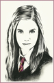 Harry Potter cast drawings sa pamamagitan ng Jenny Jenkins