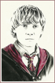 Harry Potter cast drawings par Jenny Jenkins