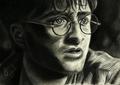 Harry Potter drawing by Jenny Jenkins