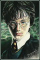 Harry Potter drawing oleh Jenny Jenkins
