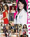 LisaCuddyFan - dr-lisa-cuddy photo