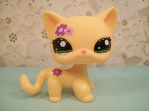 Littlest Pet boutique Toys