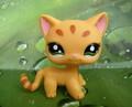 Littlest Pet खरीडिए Toys