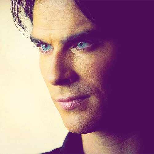 Damon Salvatore پیپر وال containing a portrait called Mr. Salvatore
