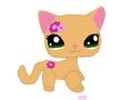 My LPS Kitty प्रशंसक Art