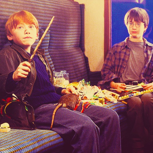 Ron & Harry