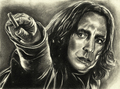 Severus Snape drawing by Jenny Jenkins