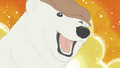 Polar Bear - shirokuma-cafe photo