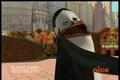Slap Day! :D