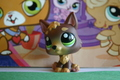 Some of my Littlest Pet Shops