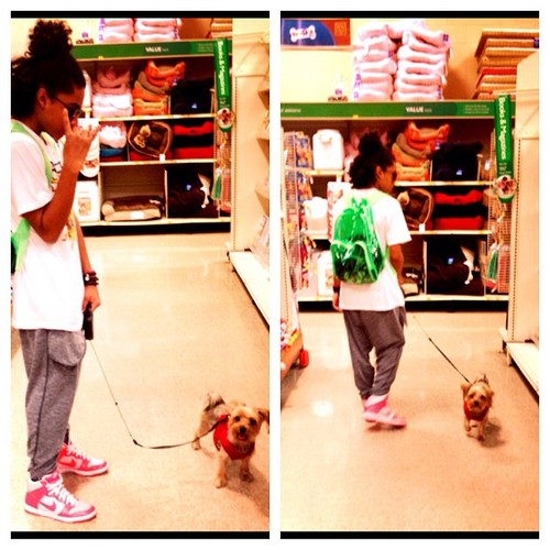 Spoiling beans 2 day!! This dog has is so hyper!:) #Spreadthepeace Follow me on IG @princemisfit (Ta