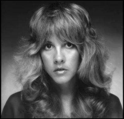 stevie nicks wallpaper with a portrait entitled Stevie
