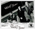 The Wolf Tribe - john-kay-and-steppenwolf photo