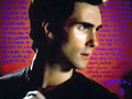 This Love - adam-levine photo