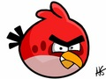 angry bird - angry-birds-are-amazing photo