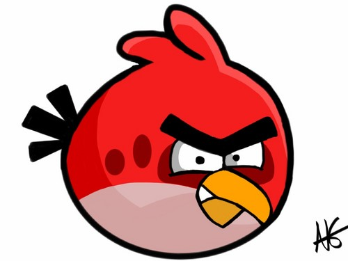 Angry Birds are Amazing images angry bird HD wallpaper and background photos