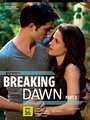 breaking dawn - twilight-series photo