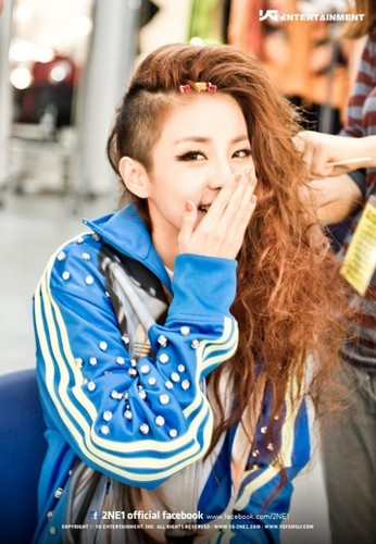 DARA 2NE1 Hintergrund possibly with an outerwear and a portrait called fierce dara