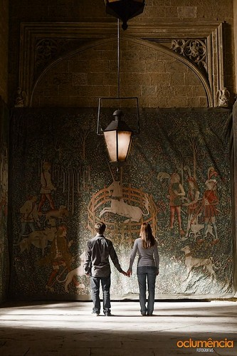 harry and ginny hp 6