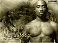 lilwolf  - tupac-shakur photo
