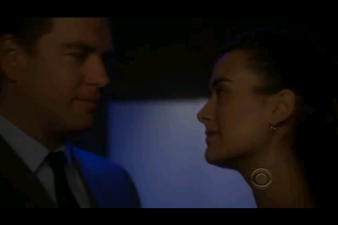 wedding?? :) (besides the bride and groom dance) - NCIS - Fanpop