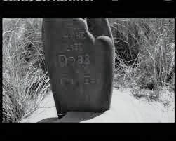here lies dobby - photo #37