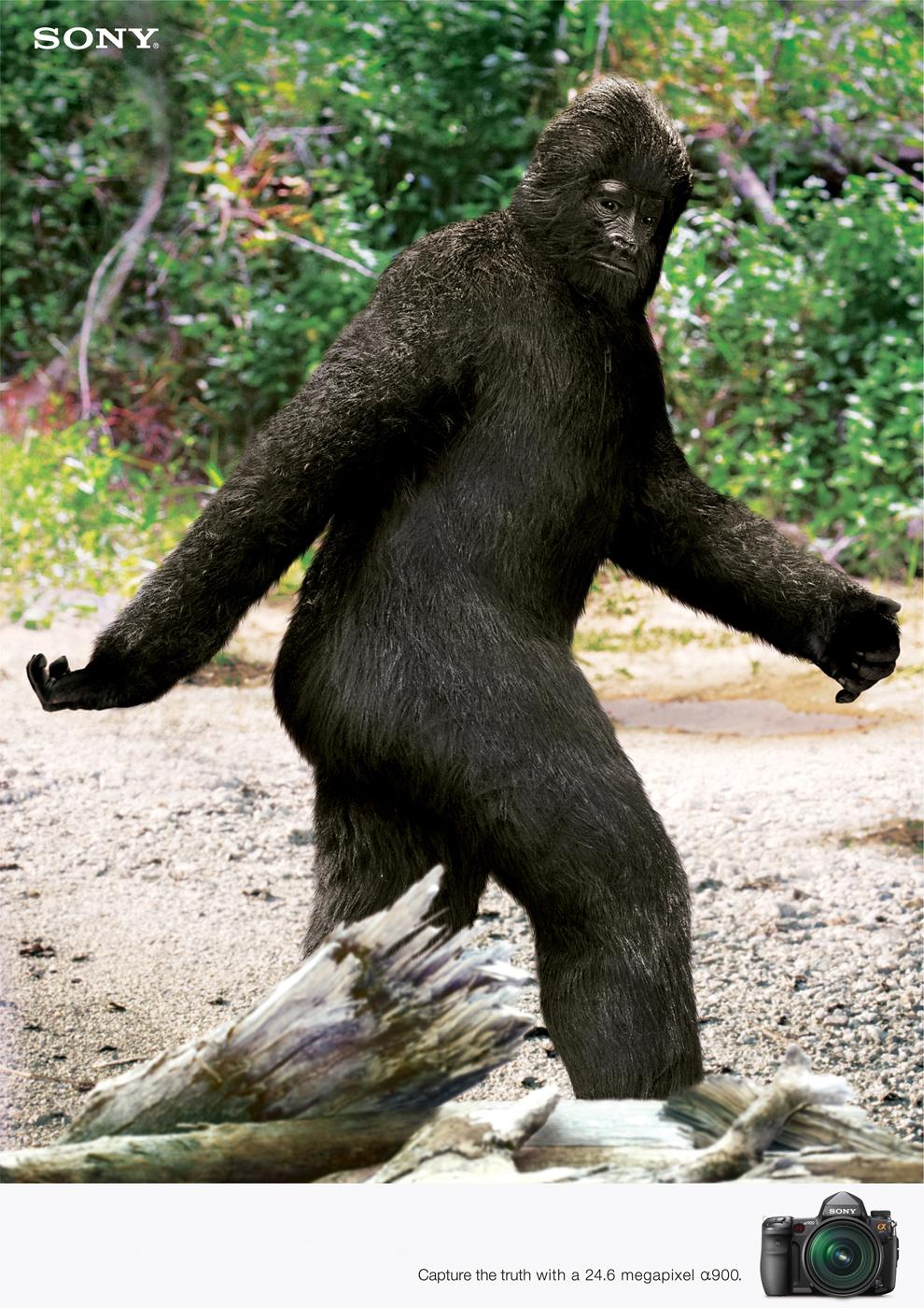 Is Bigfoot Real Bigfoot Fanpop