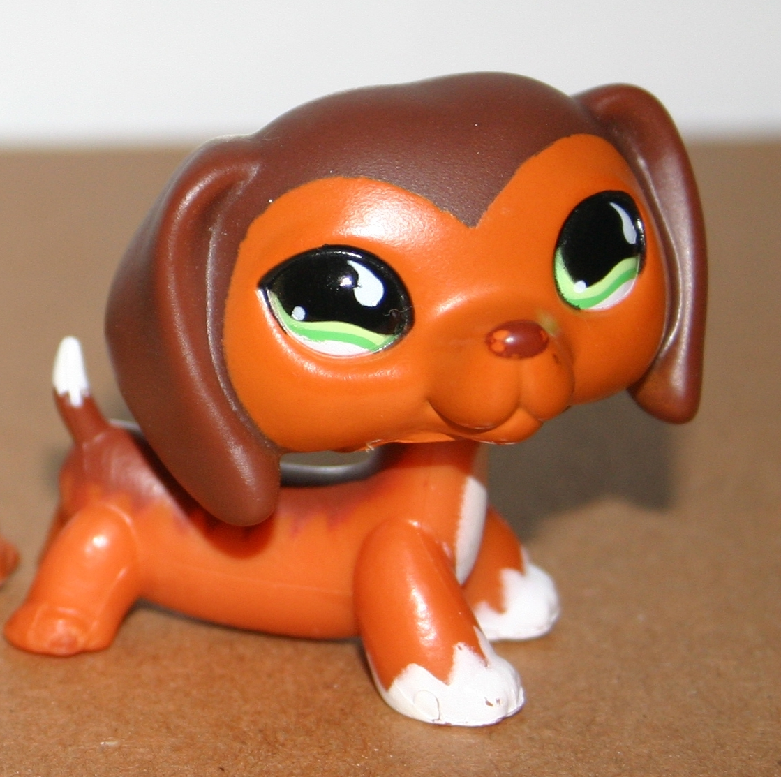 Littlest Pet Shop Wiener Dogs Littlest Pet Shop Which Pet do