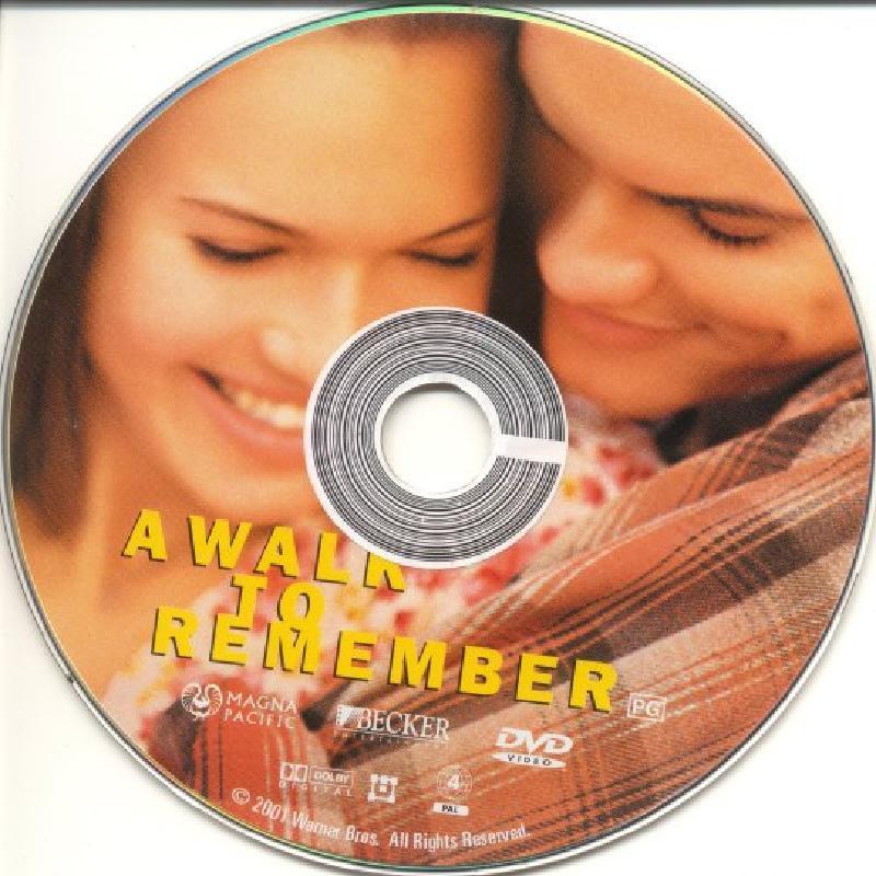 a walk to remember novel pdf