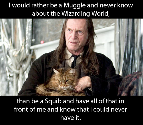 snape and dumbledore relationship quiz