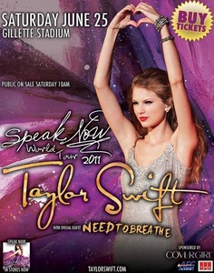 "Speak Now tour: Which instrument are used at the beginning of the song ""Enchanted""?"