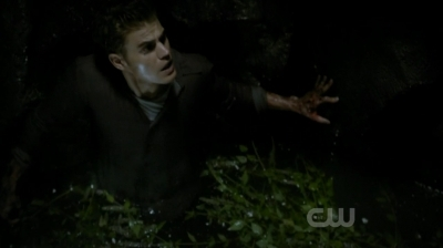 In the books Stefan was rescued from the well by