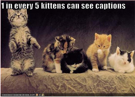 What are the lol cat captions also known as?