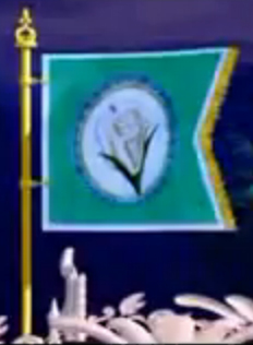 Island Princess: What is the name of kingdom as u saw this flag?