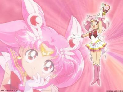 Chibiusa's real name is...