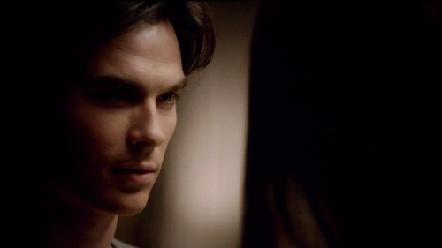 """I thought you were too drunk to notice."" Damon says to Elena. How does she respond?"