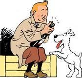 What is Tintin's dog name?