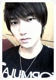 What are the subgroups that is Yesung?