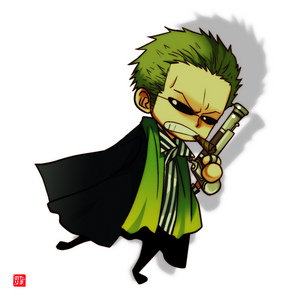 what is Zoro's hobby in the straw hat crew?