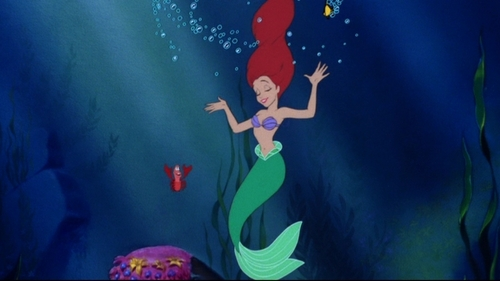 how many sea ngựa swim around ariel during under the sea?