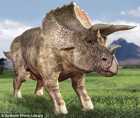 NAME IT! - Its four-legged horned appearance, somewhat reminiscent of an ancient rhinoceros, is one of the most recognized of all dinosaurs