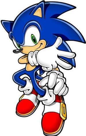 Does Sonic प्यार Amy Rose?