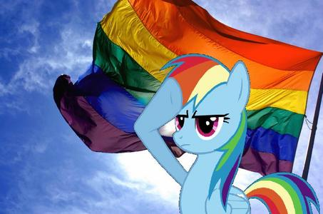 What Kind is Rainbow dash
