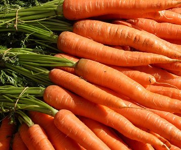 after louis said he had received a lot of carrots... what did he say?