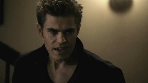 who was it that usualy helped stefan when he went crazy for blood?