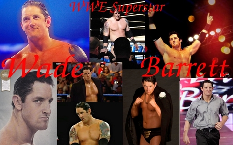 What age was Wade Barrett when he decided to become a professional wrestler?