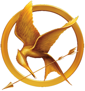 In the 74th Hunger Games, when Katniss was grabbing the backpack, a boy coughed blood in her face. What district was he from?