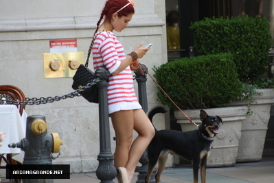 What is Ariana's Dog's name?:)