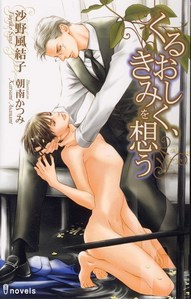 Which is this BL Novel???