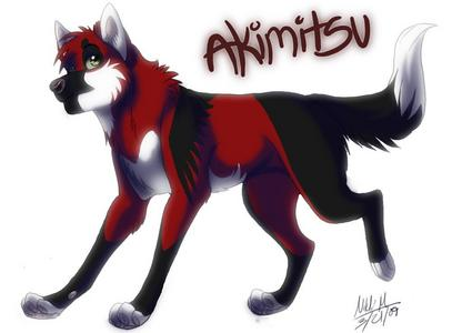 What is Akimitsu's real name